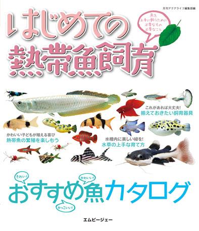 はじめての熱帯魚飼育