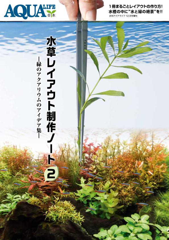 水草レイアウト制作ノート2