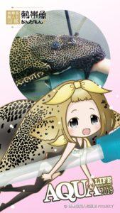 熱帯魚なんだもん!〜熱帯魚擬人化図鑑〜