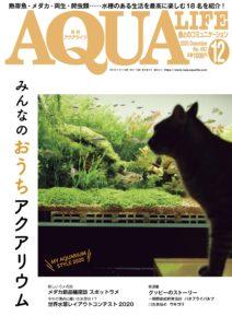 月刊アクアライフ2020年12月号