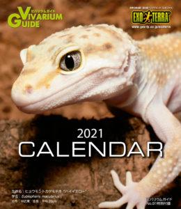 VG91_calendar