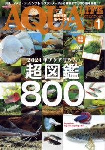 月刊アクアライフ202101