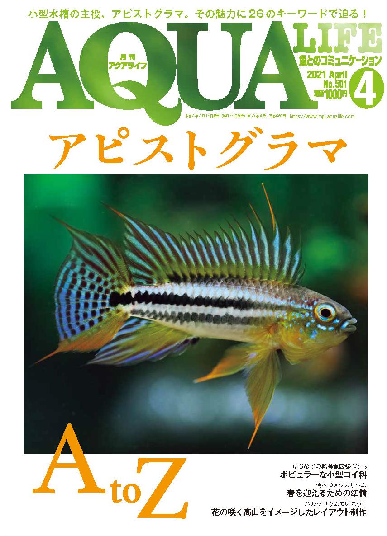 月刊アクアライフ2021年4月号